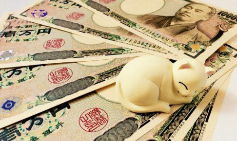 理解している?猫ちゃんを飼うのに必要なお金の話