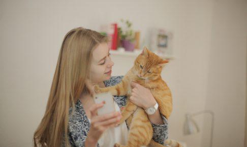 赤ちゃんがいるけど猫を飼ってもいいの?